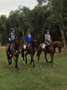 Left to right: Clark Montgomery and Loughan Glen, Phillp Dutton and Mighty Nice and Boyd Martin and Blackfoot Mystery finishing up a gallop and jump school at the Deodoro Olympic Equestrian Center in Rio de Janeiro, Brazil, on Wednesday, Aug. 3.