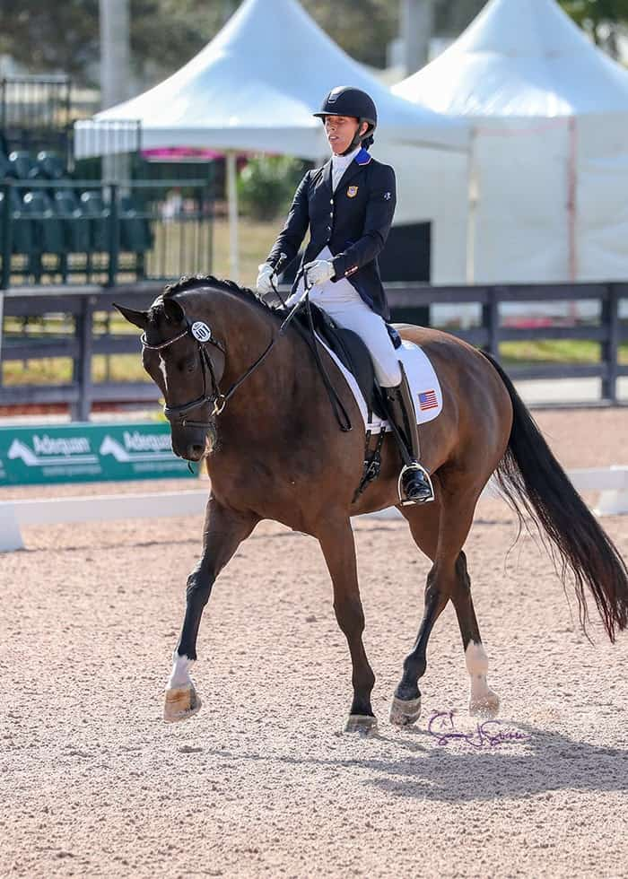 Kate Shoemaker and Solitaer 40 won the Grade IV team and individual tests at the AGDF 2 CPEDI 3*. Photo: SusanJStickle.com.